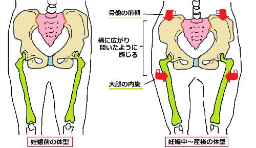産前産後の体型1.png